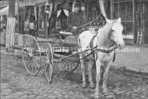 Image of Portrait of Charles A. Allen, in horse drawn wagon for Allen's Market - circa 1892. - 1953.024.005