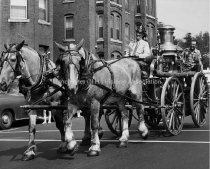 Image of Fire Engine Parade, Elm Street at Langdon Street Showing Horse Drawn Engine - 1957. - 1960.005.014