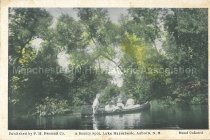Image of Postcard, A Beauty Spot, Lake Massabesic, Auburn, NH - 1974.061.032