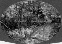 Image of Uncanoonuc Mountain - 1976.038.017