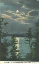 Image of Postcard, Moonlight on Massabesic Lake, Manchester, N.H. - 1992.011L.004