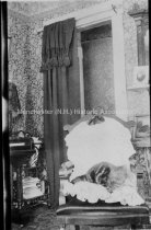 Image of Interior, 45 High Street Showing a Cat in a Chair - 2000.500.114