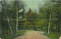 Image of Postcard, Road to Spring, Stark Park, Manchester, N.H. - 2011.080.010