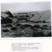 Image of Frost, Kent & Fern - 5031.207
