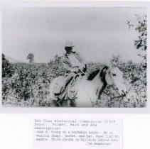 Image of Palmer, Ward & Ada - 5064.61