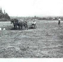 Image of PN00107 - 1910