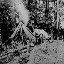 Image of PN00153 - 1895