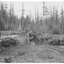 Image of PN00049 - circa 1912