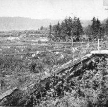 Image of PN00141 - 1912