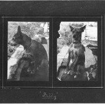 Image of PN00152 - 1910
