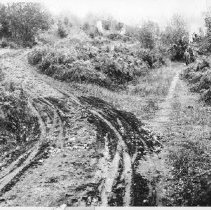 Image of PN00158 - 1911