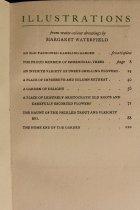 Image of List of IILLUSTRATIONS