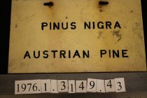 Image of Label -