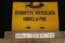 Image of Label - 1950 ca