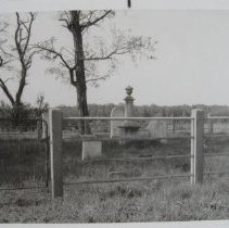 Image of 4974 - David Hodge Collection - Dallam Cemetery (Webster Family Cemetery)