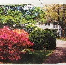 Image of 4948 - Scott's Oldfields - Bel Air Historic House in spring