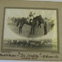 "Image of 4602 - ""In India"" - Race Horse - 1934"