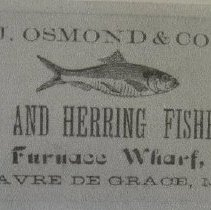Image of 4636 - J. Osmond & Co. - Shad and Herring Fisheries Sign - Havre de Grace