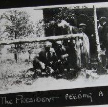 Image of 1477 - Photograph of President Warren G. Harding feeding a dog.