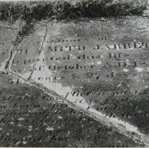 Image of 2792 - Print, Photographic