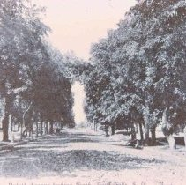 Image of Duluth Ave. (looking north), 1908