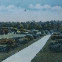 Image of McKennan Park, 1917