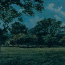 Image of Lein Park, n.d.