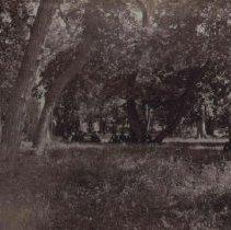 Image of Seney Island, 1886