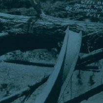 Image of Steel beam driven through tree by tornado, July 9, 1932