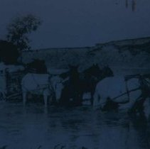 Image of Fording the Belle Fouche River (52 miles north of Rapid City), 1907