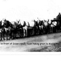 Image of Taking Grain to Maine Prairie