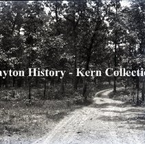 Image of K.5.9.1210 - Glass - Plate negative - Chickamauga, GA - New Chickamauga - Woods on Lytle Hill looking north east