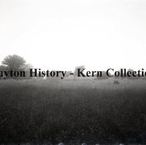Image of K.5.9.571 - Glass - Plate negative - Murfreesboro, TN- Confederate burial place