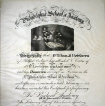 Image of Philadelphia School of Anatomy Diploma - 1902