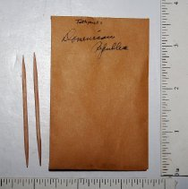 Image of 1970.3.33 - Toothpicks, Dominican Republic (2)
