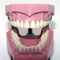Image of FIC09.15.84 - Dento-Form, Articulator