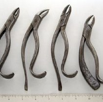 Image of FIC09.2.52 - Forceps, Extracting (4)