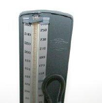 Image of Blood Pressure Apparatus