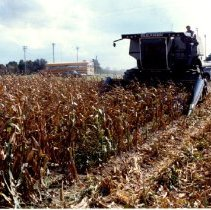 Image of A C Gleaner combine left front view                                                                                                                                                                                                                        -