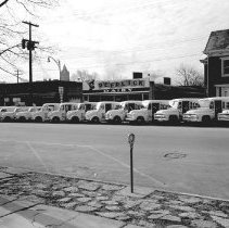 Image of Deerlick Dairy Fleet of Trucks                                                                                                                                                                                                                        -