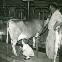 Image of Young lady inspecting the source of the milk. -