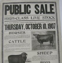 Image of 1907 Live Stock sale at the Pioneer Stock Farm in Radnor, Ohio