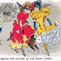 "Image of ""Seeing the calves"" postcard"