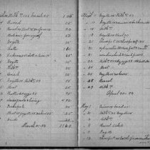 Image of Eugene and Lois Cole Nash's household expense book in 1893