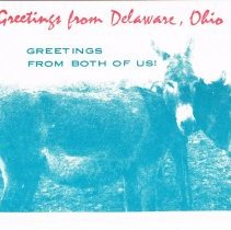 Image of Different Greeting Post Cards from Delaware, Ohio.
