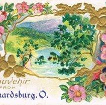 Image of Souvenir from Leonardsburg, Ohio, Post card