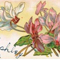 Image of Souvenir from Sunbury, Ohio, Post card