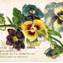 Image of Different Greeting Post cards from Delaware County, Ohio