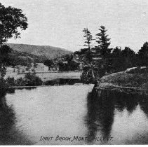 Image of Trout Brook Montgomery, Vermont