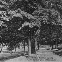 Image of Main Walk to Sulphur Spring, OWU Campus, Delaware, Ohio